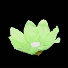Vandens žibintas ( Žalias)