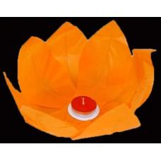 Vandens žibintas (Oranžinis)
